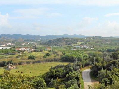 Portugal_Drive_9.jpg