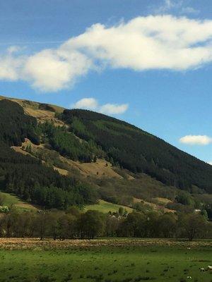 Scotland_Drive13.jpg