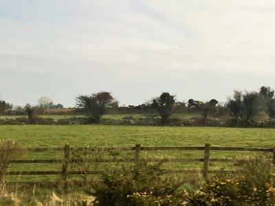 Waterford_Drive.jpg