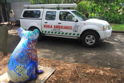 Koala statue waiting for new arrivals at the hospital