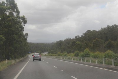 Two lanes each way and lush forest all the way