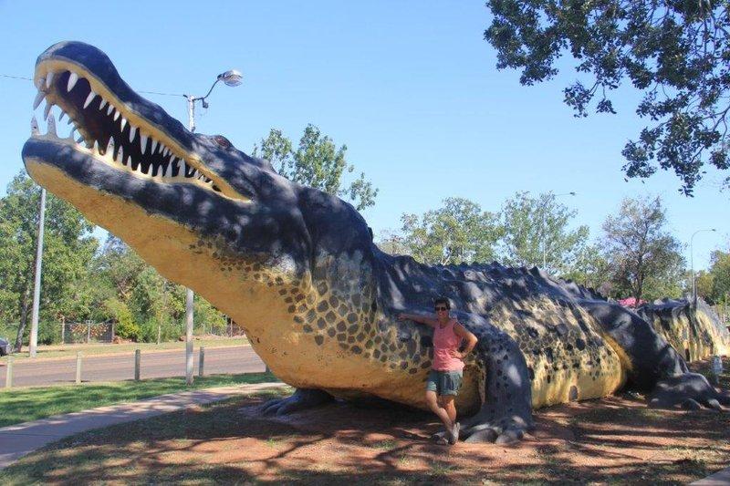 20m cement croc in Wyndham