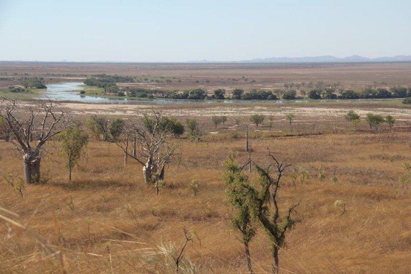 Bird watch at 1km long billabong in dry plain