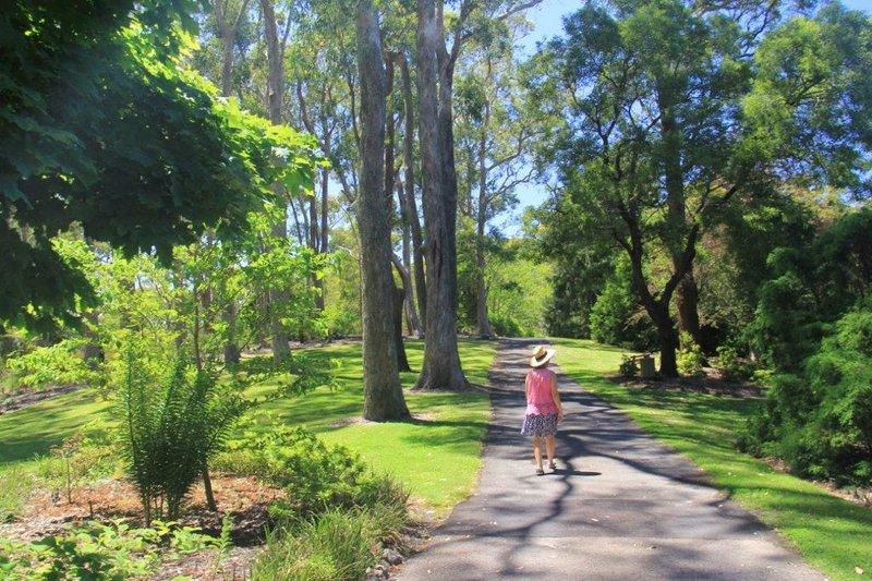 Botanical garden near Mt Lofty