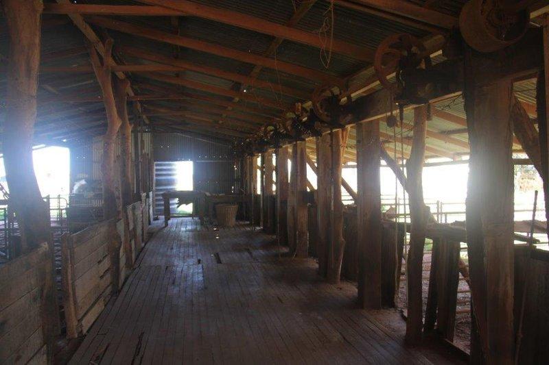 Bullara station sheep shearing shed