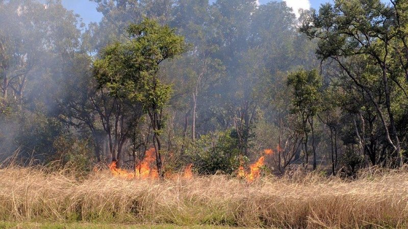 Bush fire on our journey