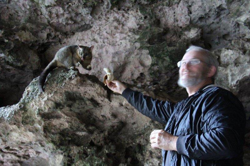 Feeding possums in Umpherston Sinkhole