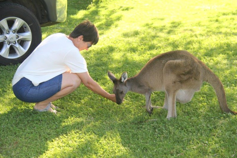 Friendly locals in Quinninup