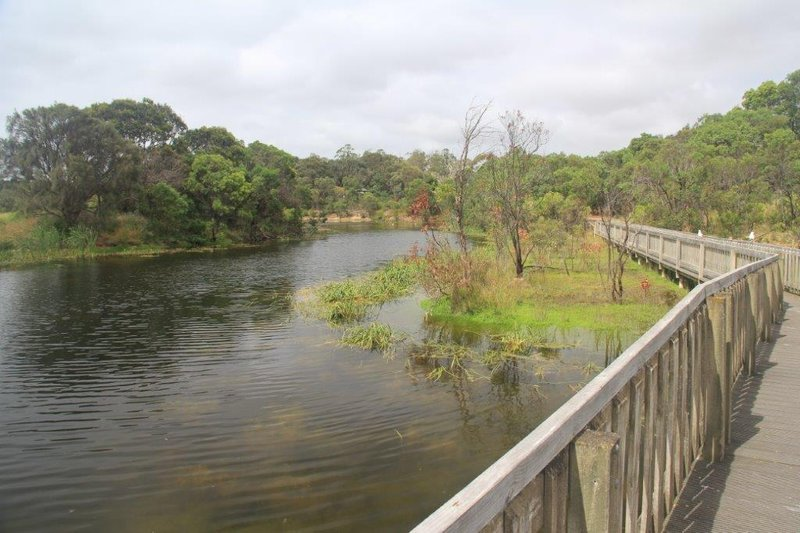 Lake McIntyre bird sanctuary in Millicent