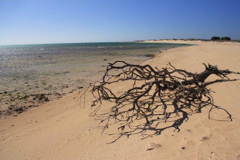Long beaches in 6000 sq km park