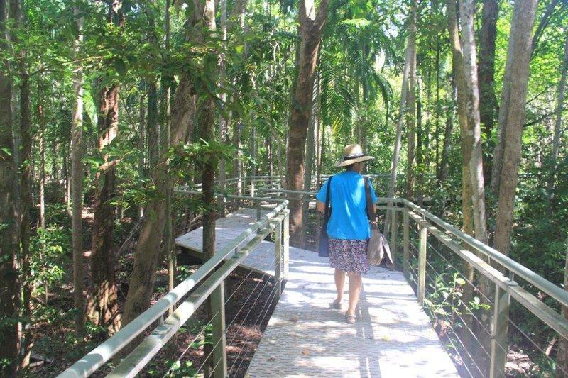 Monsoon Forrest Walk