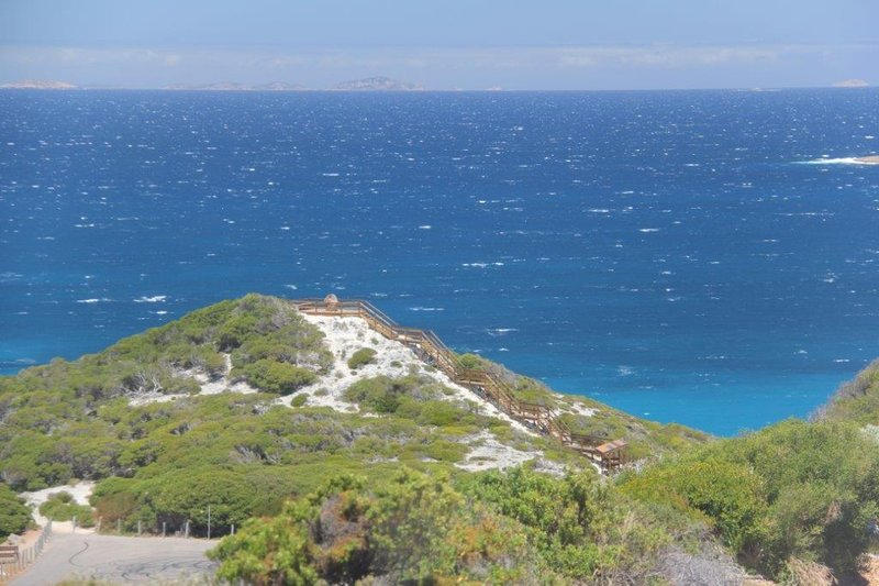 Observation point for whale watching