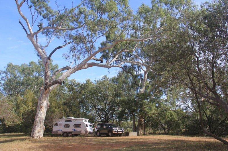Our home among the gum trees