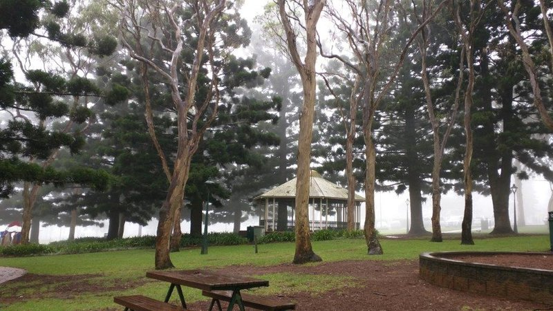 Picnic Point during fog
