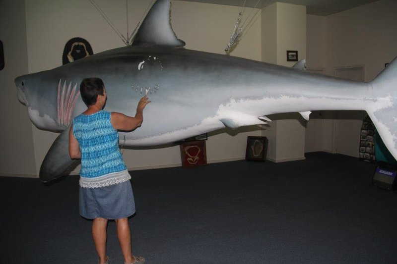 Replica of biggest White Pointer ever caught at 1520kg