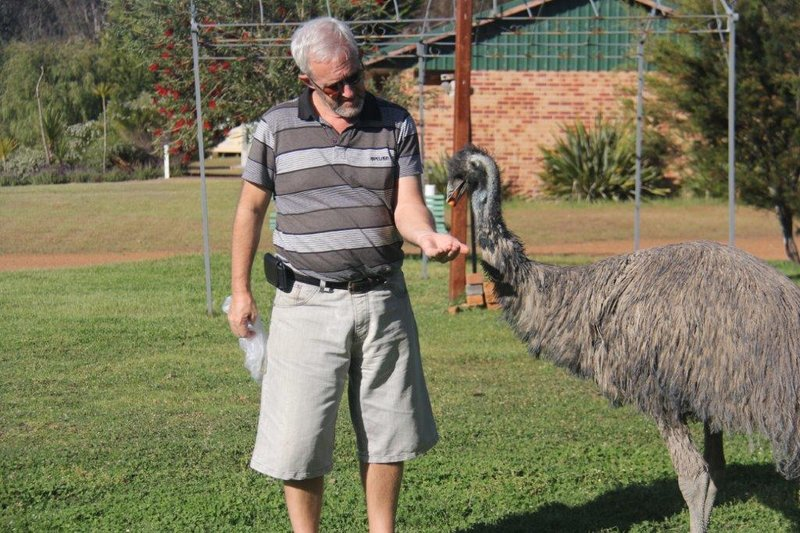 Sharing a carrot with an Emu
