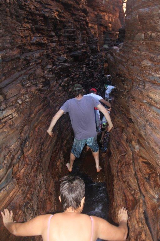 Spider walking narrow narrow gorges