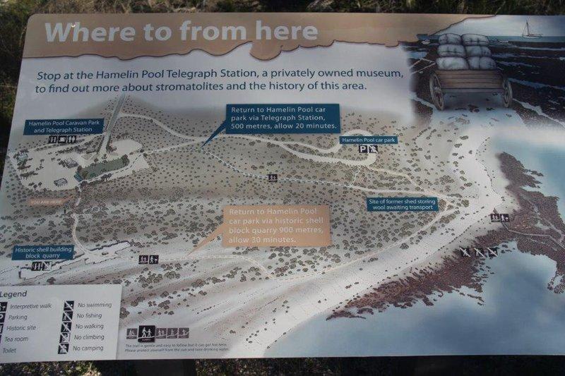 Stromatolite walking route