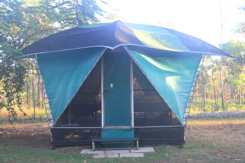 Tents in our park in Jabiru for groups