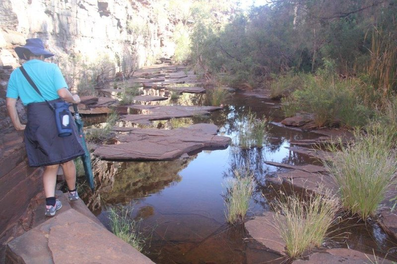 The bottom of Dales Gorge