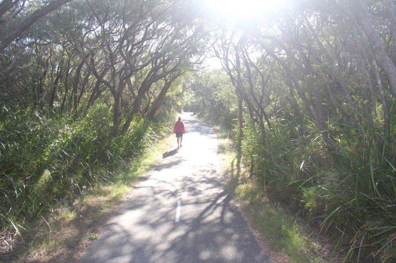 The long pathway passing our caravan park