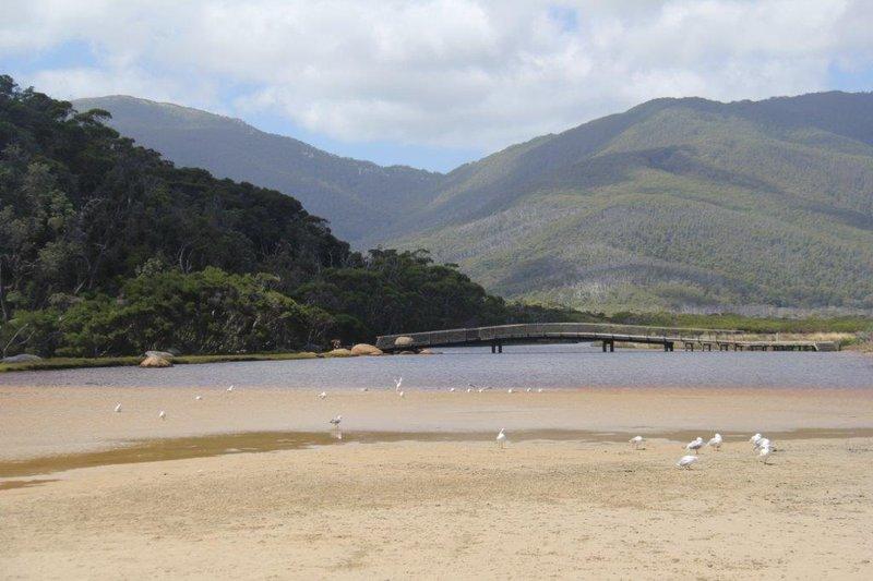 Tidal River in Wilson's Promontory