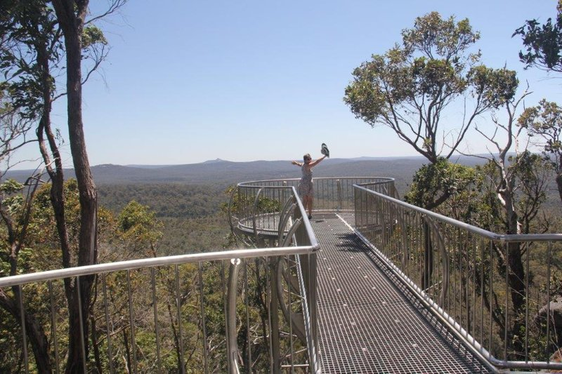 Top of the world on tree top walk