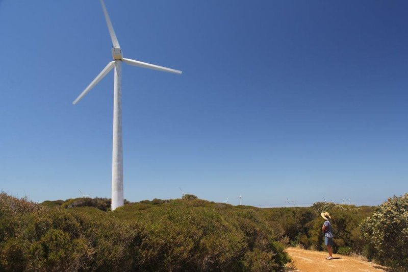 We checked out a wind farm