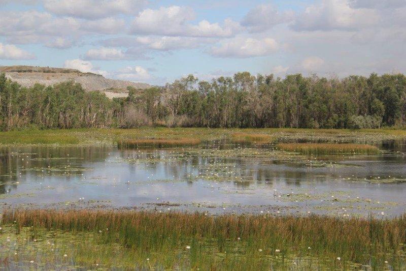Wet lands and ERA uranium mine side by side