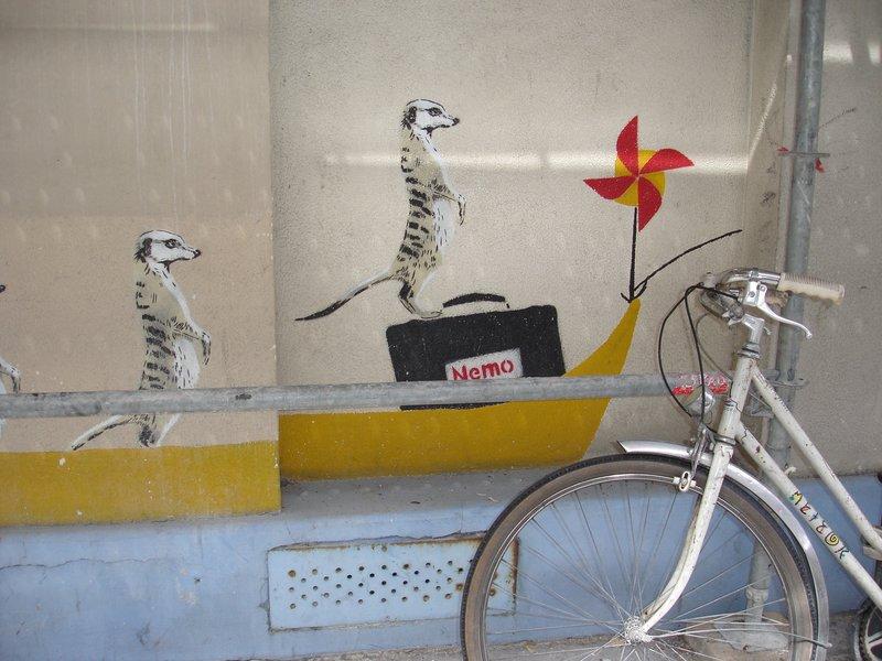 Meerkats and bike