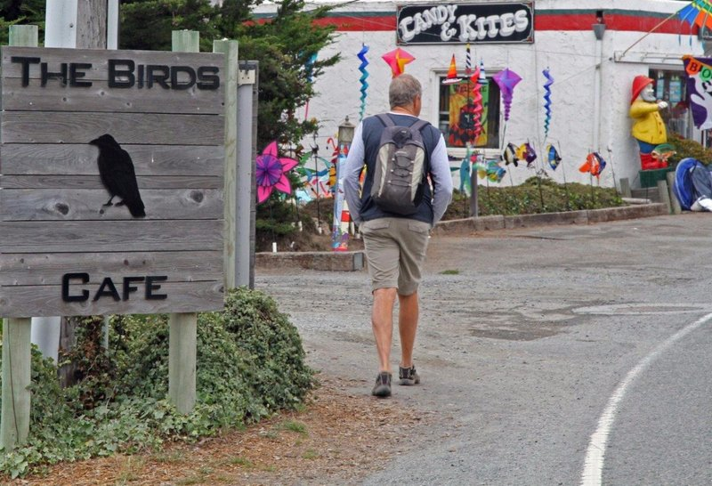 large_Bodega_Bay_005_Birds_cafe.jpg