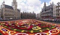 1Brussels_floral_carpet_B.jpg