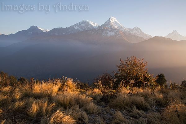 First light on Poon Hill