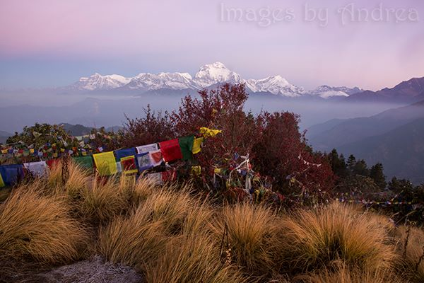 Poon Hill Sunrise