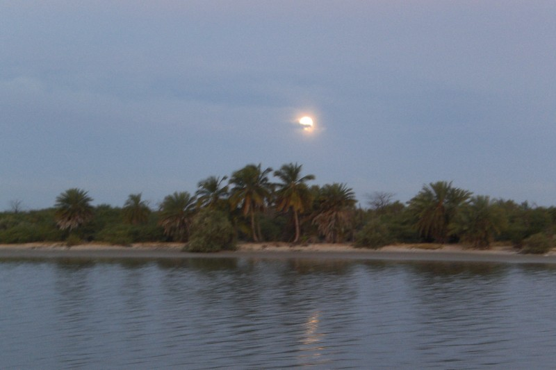 Senegal river - morning moon above mauretanian cost 2009