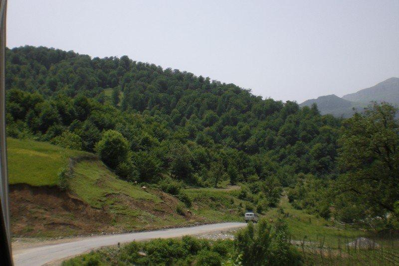 Quba - nearby woods 2009