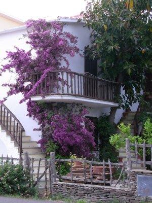 House in La Caletta - 2010