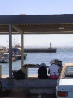 Fish Hoek - Fish market 2013