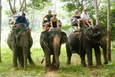 Elephant_Trek__52_.jpg