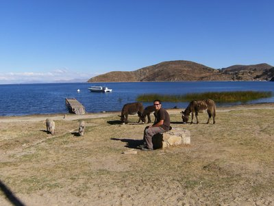 Steve surrounded by animals on Isla del Sol