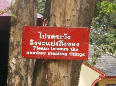 Monkey_Temple__13_.jpg