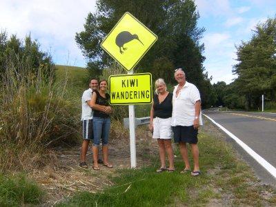 Kiwi Wandering