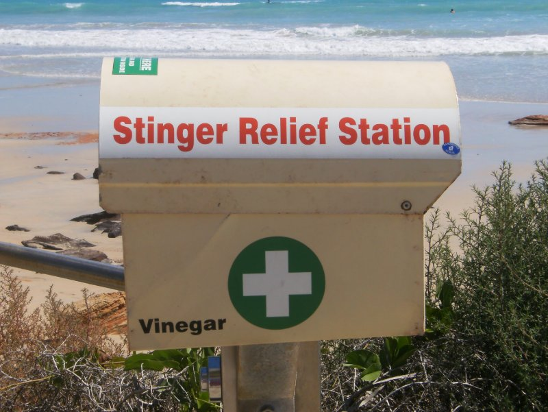 Stinger Relief Station