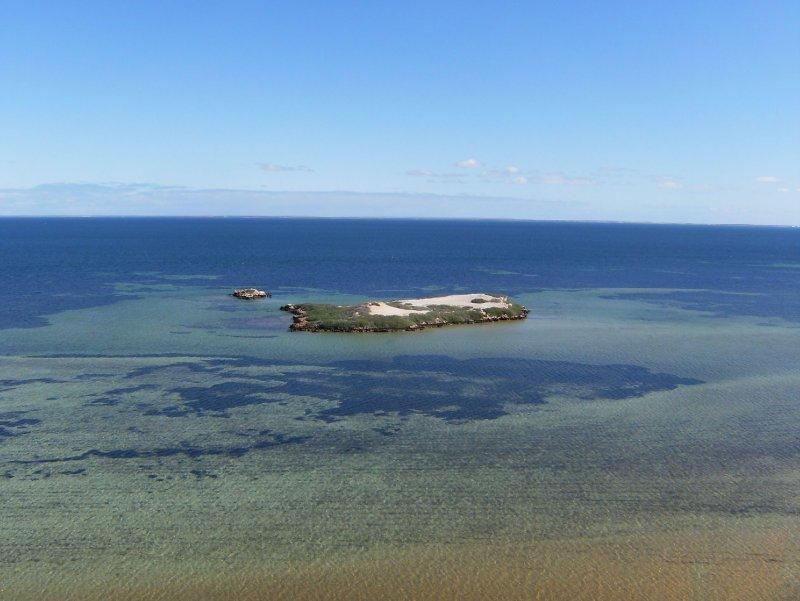 Eagle Island (Eagle Bluff)