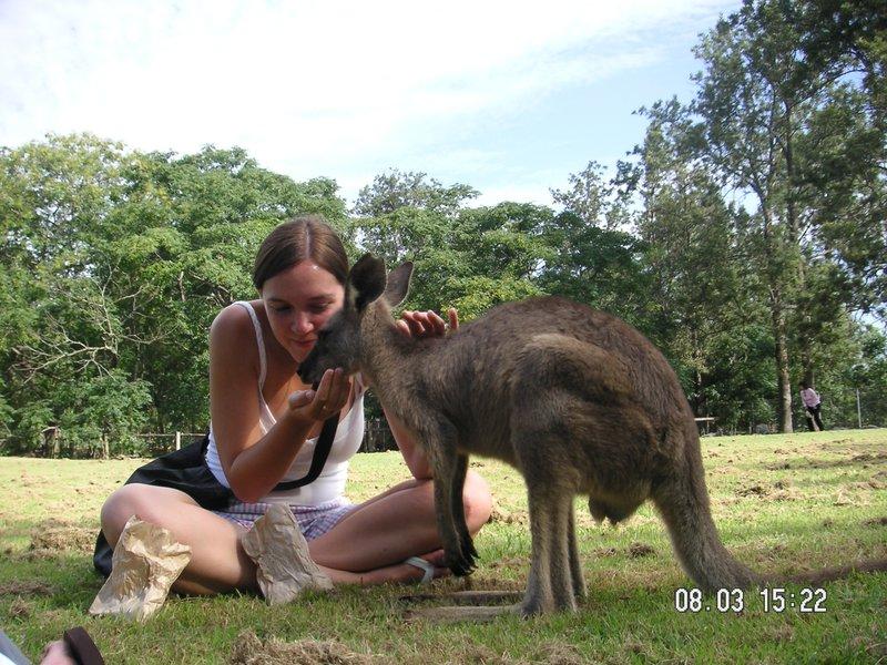 Feeding a Roo!