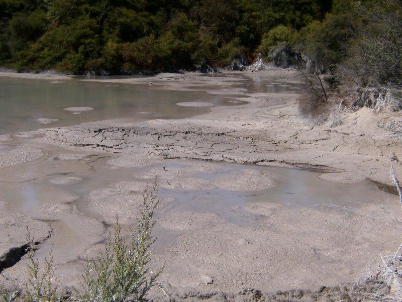 Smelly mud-pool