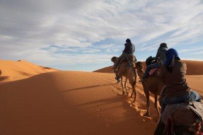 Camel_trekking.jpg