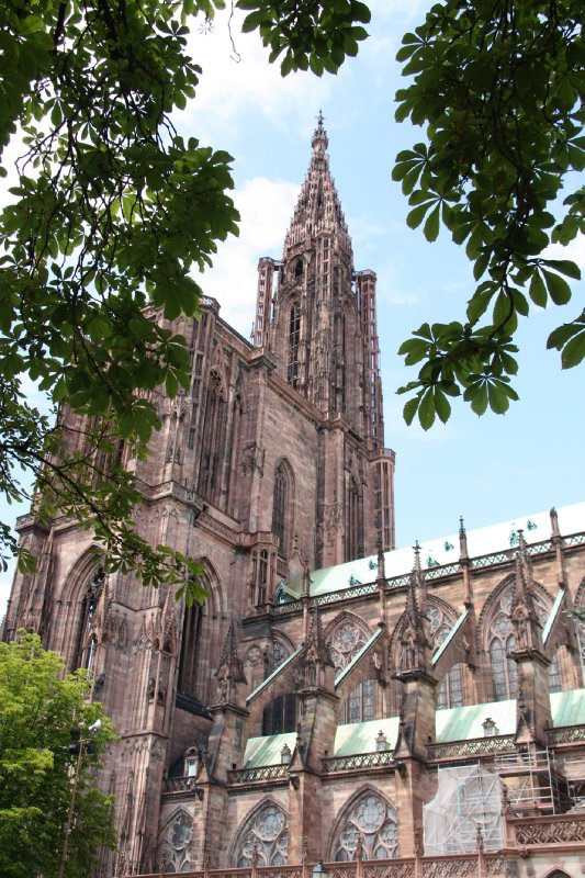 large_Strasbourg_cathederal.jpg