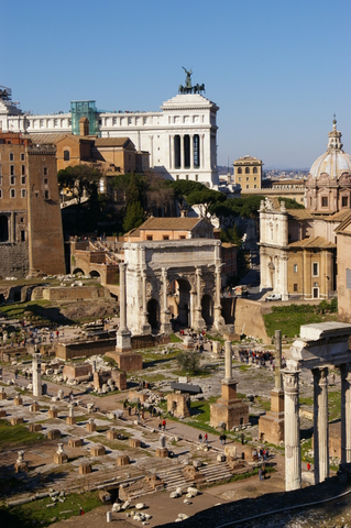 The Roman Forum from the Palatine
