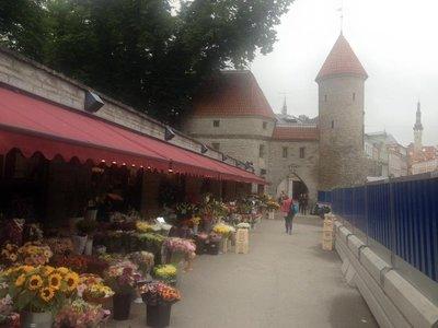 old_town_Tallinn_2.jpg